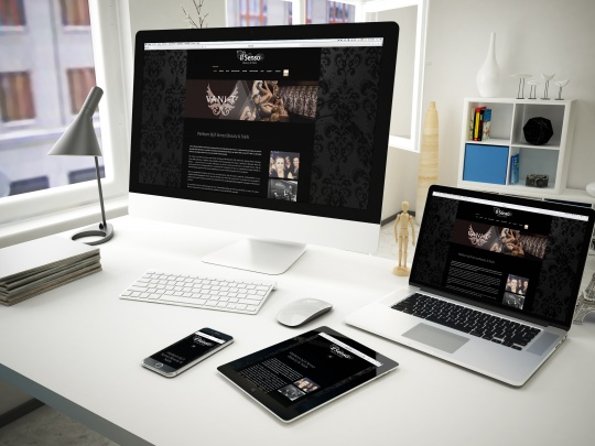 Mockup ilsenso Website